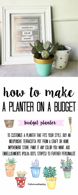 budget planter pinterest image (320x800)